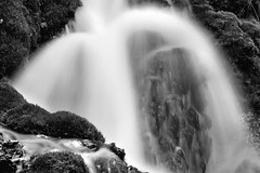 2017 Roughlock Falls In Monochrome 29 (DrLensCap) Tags: roughlock falls in monochrome spearfish canyon scenic drive black hills national forest south dakota sd waterfall bw and white 40 day adventure robert kramer