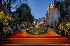Escaliers Denis Papin Blois (v.hajek) Tags: night blois poselongue exposition city longexposure denispapin ville escaliers nuit