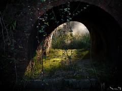 Al otro lado (Jaime Martin Fotografia) Tags: asturias nature light naturaleza gijon