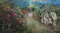 Auvers sur Oise (jeanfenechpictures) Tags: auverssuroise oise chemin walk path fleurs flowers iledefrance france impressionnisme impressionism mur wall jeanfenech