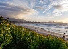 Carmel Beach (lsalcedo) Tags: carmelbythesea beach californiacoast beautyofnature beingthere sunset