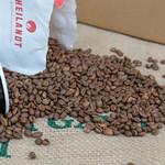 Aus Beutel ausgekippte, aromatisch geröstete Kaffeebohnen mit Kaffeetasse auf Jutesack thumbnail