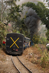 Z Up Hill (gooey_lewy) Tags: darjeeling himalayan mountain railway steam tour magazine india narrow gauge sharp stewart b class 040 tank saddle well loco locomotive train rail indian steep hill cart road west bengal charter dhr dhmr joy toy forest jungle 782 sun light railroad tree people grass haze mist tindaria works tindharia up staff crew oiling point cylinder z reversal