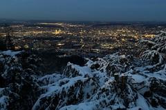 zurich by night (Toni_V) Tags: iphone xr apple iphoneography uetliberg zurich zürich winter schnee snow city hiking wanderung night nightshot switzerland schweiz svizzera suisse svizra europe topofzurich ©toniv 2019 190129