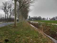 20190202 01 Zeerijp (Sjaak Kempe) Tags: 2019 winter february februari sjaak kempe motorola moto g5 plus nederland netherlands niederlande provincie groningen zeerijp aardbevingsgebied aardbeving