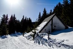 0084_DSC_2534 (marcellszmandray) Tags: kirándulás tél lucskaifátra szlovákia hó fátra