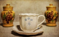 Bone China Coffee Cup (N.the.Kudzu) Tags: tabletop stilllife bonechina coffee cup saltandpepper canoneosm lensbabytrio28 2lilowls lightroom preset photoscape texture