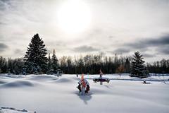 Garden of Remembrance Beaver Lake Cree Nation (JAG Creeations) Tags: yeg edmonton alberta canadabeautyartlovelandscapecityurbantreesbuildingsparks art sublime beauty canada