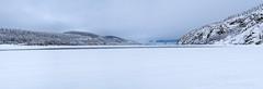 _ROS3520-Pano-Edit.jpg (Roshine Photography) Tags: yukonriver yukonquest winter snow dawsoncity environmental ice yukon canada ca