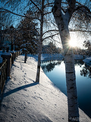 All you have to do is glisten! (Through_Urizen) Tags: category eskisehir kanlikavakpark landscape places snow turkey ice frozen cold season river riverbank winter water watercourse park citypark tree trees bluesky sky outdoor landscapephotography canon70d canon canon1585mm shadows light sunstar icecrystals reflections