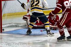 20190222_20362003-Edit.jpg (Les_Stockton) Tags: alabamacrimsontide sport hockey ucobronchos crimsontide alabamauniversity jääkiekko jégkorong xokkey eishockey haca hoci hokej hokejs hokey hoki hoquei icehockey ledoritulys íshokkí edmond oklahoma unitedstatesofamerica us