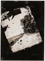 Emulsion Lift 1 - Bugac Road (Attila Pasek (Albums!)) Tags: emulsion lift road sinarf1 bugac largeformat collodion 4x5 paper wetplatecollodion