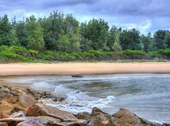 Cloudy day at the seaside II (elphweb) Tags: trees forest tree bush wood woods bushy hdr highdynamicrange nsw australia waves wave sea ocean bay water beach beachy rocks rocky rock rockformation cloudy
