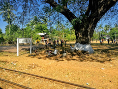 Yangon train ride from Mawlamyine, Myanmar (goneforawander) Tags: backpacking scenery d7100 travel goneforawander myanmar mawlamyine nikon asia enzedonline yetkanthema monstate myanmarburma mm