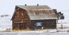 Old Barn Along I-90 (wyojones) Tags: montana jens powellcounty barn populatedplace snow blowingsnow interstate90 i90 highway sign feburary