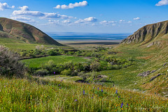 Wind Wolves View (Pismopup Photography) Tags: spring windwolvespreserve view mountain valley wildflowers kerncounty grassland california