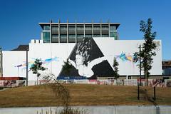 20190222-078-Christchurch street art (Roger T Wong) Tags: 2019 christchurch newzealand rogertwong sel24105g sony24105 sonya7iii sonyalpha7iii sonyfe24105mmf4goss sonyilce7m3 southisland art city streetart travel
