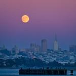 Full Moon - San Francisco thumbnail