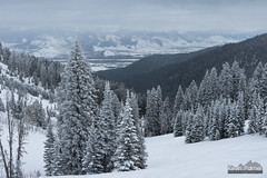 View From Teton Pass (kevin-palmer) Tags: december winter snow snowy cold jackson tetonpass highway22 tetons mountains afternoon cloudy overcast wyoming trees bridgertetonnationalforest tamron2470mmf28 nikond750