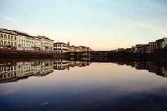 La foglia (michele.palombi) Tags: foglia arno river sunset film analogic shot 35mm kodak portra800 nikon f3 colortec c41 negativo colore