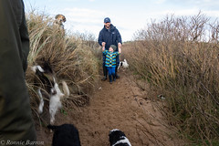 narrow path (RCB4J) Tags: ayrshire ayrshirecoast babygrace clydecoast firthofclyde irvinebeach jakob rcb4j ronniebarron scotland siameselurcher sony18250mmf3563dtaf sonyslta77v trailhound art bordercollie dobermanterrier dogs labradors photography retrievers shoragundogs spaniels