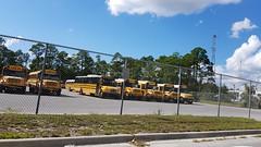 Bay District Schools (abear320) Tags: bay district schools panama city florida blue bird international thomas