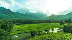 DSC01203-2 (skoraphy) Tags: landscape nuithanh vietnam a6300