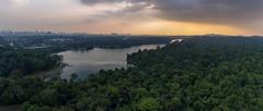 MacRitchie Reservoir (ctheisinger) Tags: singapore centralregion sg drone dji phantom 4 macritchie reservoir aerial