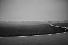 Long And Winding Road (RadarO´Reilly) Tags: landstrase countryroad winter schnee snow landschaft landscape nebel dunst mist sw bw blanconegro monochrome noiretblanc zwartwit haarstrang nrw germany