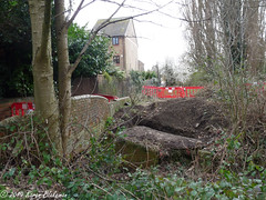 Area cleared for tests and surveys in Hills Meadow (karenblakeman) Tags: caversham uk hillsmeadow trees floodalleviationscheme march 2019 reading berkshire house