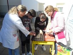 Huerto-Escolar-Asociacion-San-Jose-Guadix-20190314-0002 (Asociación San José - Guadix) Tags: huerto escolar asociación san josé centro educación especial ntra sra de la esperanza 2019 marzo