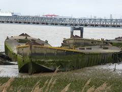 UK - London - Near Rainham - Concrete boats in River Thames (JulesFoto) Tags: uk england northeastlondonramblers london rainham concreteboats riverthames concretebarges rainhammarsh