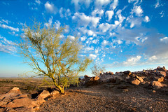 Blue Skies_1 (Ed Cheremet) Tags: arizona desertargonaughtgmailcom edcheremet estrellamountainregionalpark goodyear bluesky clouds httpedcheremetartistwebsitescom mountains