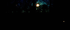 moon set (bluebird87) Tags: moonset dx0 c41 film lightroom kodak ektar nikon f5 epson v800
