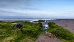 The wedge (Through Bri`s Lens) Tags: northdevon croydebay beach rocks seaweed surf surfers waves brianspicer canon5dmk3 canon1635f4