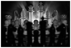 151 of 365 - Half (Weils Piuk) Tags: photoblog365 epic chess black white bw king queen bishop knight tower peon battle war pawn game showdown