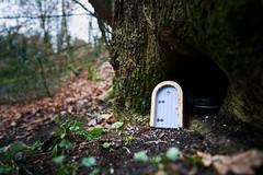 Fairy Door, Fairy Glen, Parbold (nickcoates74) Tags: 12mm 12mmf20 a6300 fairydoor fairyglen ilce6300 parbold samyang sony ultrawide wigan lancashire uk appleybridge