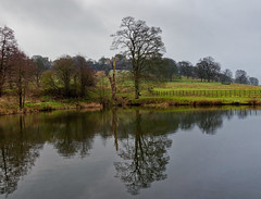 Hardwick hall. (S.K.1963) Tags: derbyshire hardwick hall bess reflections trees lake cows fence olympus old em1 mkii 714mm 28 pro landscape
