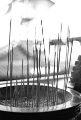 天后宮_2 (Taiwan's Riccardo) Tags: 2018 135film negative bw fujifilmacros100 plustek8200i taiwan slr canoneos3 canonlens stm ef fixed 50mmf18 台北市 西門町 天后宮