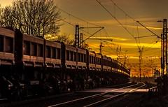 46_2019_02_14_Gelsenkirchen_Bismarck_6151_163_Rpool_mit_Seitenkipperwagen ➡️ Herne_Abzw_Crange (ruhrpott.sprinter) Tags: ruhrpott sprinter deutschland germany allmangne nrw ruhrgebiet gelsenkirchen lokomotive locomotives eisenbahn railroad rail zug train reisezug passenger güter cargo freight fret bismarck db ccw de efm eh eloc hctor rpool pkpc spag 323 0077 0275 0632 1225 1265 1266 1275 3294 6145 6156 6185 6186 6189 6241 9123 9124 captrain ecr ell hectorrail lotos setg spitzke museumszug schrottzug logo natur outdoor graffiti wildgänse flugzeug sonnenuntergang airbus 380