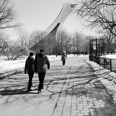 Le printemps se rapproche... (woltarise) Tags: gr ricoh tour olympique soleil flâneurs jardin botanique montréal
