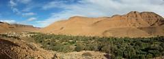 Oasis en la garganta de Ziz (dorieo21) Tags: oasis marruecos maroc morocco