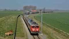 2015  96863  NL (Maarten van der Velden) Tags: nederland netherlands niederlande paysbas paísesbajos paesibassi lewedorp db cargo ns1614 dbs1614 ns1600 train61071