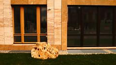 gwb | stein unter beobachtung (stoha) Tags: stein beobachten beobachtung cctv überwachung guesswhereberlin stone pietra gestein stoha soh berlin berlino deutschland duitsland germania germany europa europe