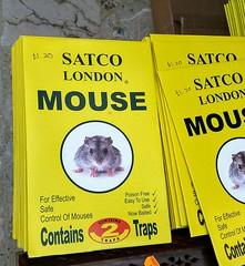 """For effective safe control of mouses"" (John Steedman) Tags: london uk unitedkingdom england イングランド 英格兰 greatbritain grandebretagne grossbritannien 大不列顛島 グレートブリテン島 英國 イギリス ロンドン 伦敦"