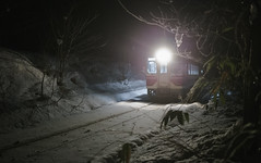 3171 (Keiichi T) Tags: train 木 tree 6d 電車 森 winter night shadow eos 光 canon 日本 影 snow 冬 雪 japan forest light 夜