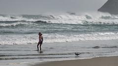 Summer surf (Ian@NZFlickr) Tags: stclair beach sea surf waves girl gull pacific dunedin otago nz