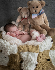 Love this so much. One of my favorite shoots! (NamelessPhotographs) Tags: red newborn portrait newbornphotoshoot baby boy child maternity family love newbornsession nikon lightroom brown natural indoor sweet infant props style new tennessee tnphotographer taefrank tnphoto