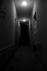 [Teñvalded] ([ Yuna ]) Tags: naoned nantes brittany bretagne bw wb nacht nuit night noche monochrome corridor couloir hall gang light lumière licht creepy loneliness sadness scary angst schrecken peur angoisse horreur horror photographie périphérique dark sombre dunkel