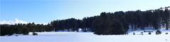 Pianoro di Macchialonga (Cufari Photo) Tags: snow winter nature view wildlifephotography photography mountains mountain landscape sila calabria park canon naturephotography panorama